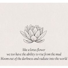 "89 Likes, 8 Comments - Brian Chavarria (@1brianbrain) on Instagram: ""✨Even being surrounded by mud, the lotus flower  still blossoms. Your soul is the LOTUS FLOWER.…"""