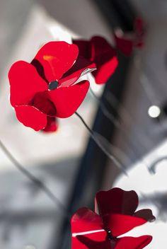 #poppies #marialuisarocchiflowers