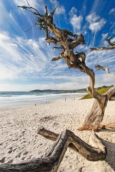 Carmel By The Sea , California, USA. Storm is coming