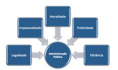 JORGENCA - Blog Administração: Princípios da Administração Pública