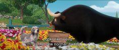 BEST MOVIE QUOTES    Ferdinand(2017)