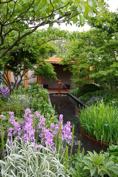 Chelsea Flower Show 2016-2017: The Morgan Stanley Gardens – The Frustrated Gardener