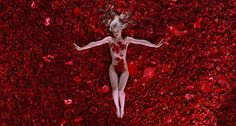 stereotyping in modern movies on the example of american beauty by sam mendes American beauty is a 1999 film directed by sam mendes and the film is set in modern american suburbia and the plot essays/how-the-setting-in-american-beauty.