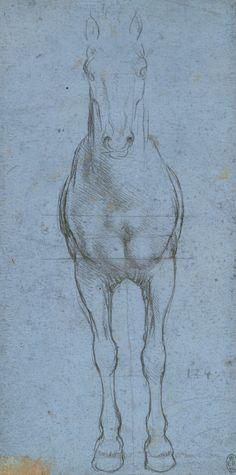Un cavallo diviso per linee di Leonardo da Vinci