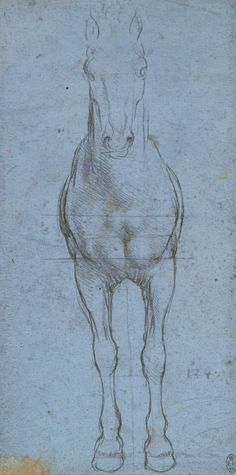 A horse divided by lines  Leonardo da Vinci (Vinci 1452-Amboise 1519)   #TuscanyAgriturismoGiratola