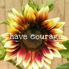 Have courage.  Be strong and be true.