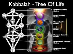 WOEIH 42 Kabbalah and the Tree Of Life w/ Mark Passio - Full - YouTube (WOEIH: What On Earth Is Happening . com) -- comprehensive explanation of TOL, mentioning the relation of TOL with Judaism, Tarot Cards, and other occults, and 911.