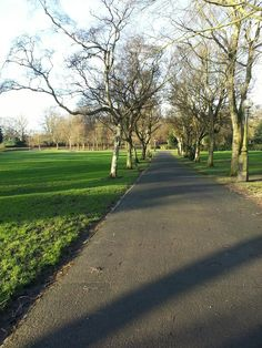Eye for a Bargain: Walking Journal, 28th January 2016 - Parr Fold Park, Walkden