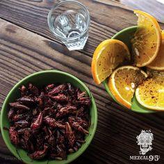 Mezcla chapulines, naranja y #MezcalNueveCinco95. Su sabor contrastante hará en tu paladar una fiesta   #mezcal #agave #artesanal #orgánico #destilado #espadín #naranja #chapulines #méxico #comida #maridaje #organic #drink #delicious #drinkorganic #orange Bar Mexicano, Mezcal Tequila, Mexican Cocktails, Harvest, Beef, Photo Products, Cooking, Ethnic Recipes, Ideas Para