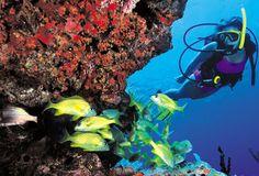 Best Scuba Diving Destinations - Virgin Islands