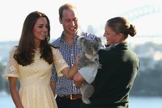 Kate and William met koalas in Sydney in 2014. Image Source: Getty / Cameron Spencer Pictures of the British Royals With Animals | POPSUGAR Celebrity UK