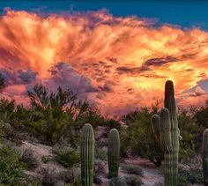 Dust storm sunset in Arizona. Desert Dream, Desert Art, New Mexico, Beautiful World, Beautiful Places, Simply Beautiful, Big Sky, Best Photographers, Route 66