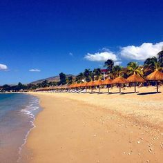Life is a beach ❤ @danielle_dreis  2815-0111 (Haïti) / 1 855 308 0375 (USA)