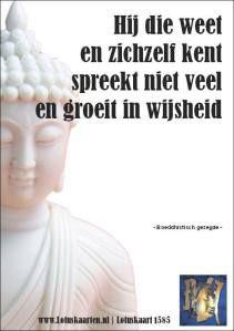Boeddhistische wijsheid