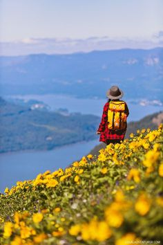When it relates to camping in the open air, much like everything else, there's always some good tips and camping hacks which will make the trip a little easier, if not also down right more fun. Camping And General Mountain Trails, Mountain Hiking, Oregon Travel, Travel Usa, Travel Tips, Hiking Photography, Enjoy Your Vacation, Columbia River Gorge, Best Hikes
