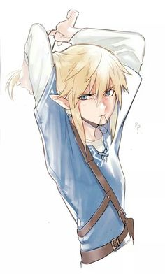 Link with ponytail