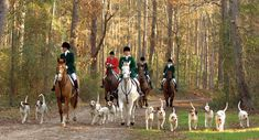 The Aiken Hounds is a historic drag hunt that has hunted in Hitchcock Woods in Aiken from the time of the Hitchcocks.
