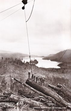 Logging - Lake Cavanaugh, Wash.