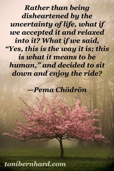Wisdom from Pema Chodron