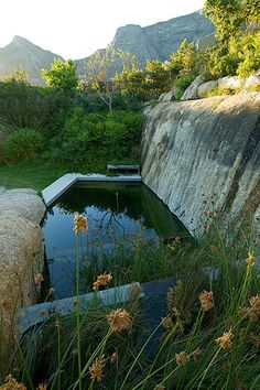 franchesca watson, studioMAS architects, and heimo schulzer gardens / 17 glen residence,  higgovale cape town