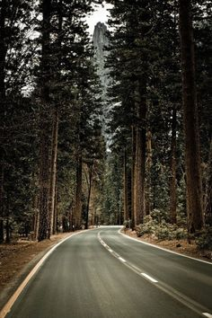 Road to Yosemite National Park. This Road is even better in person <3