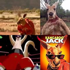 Kangaroo Jack taught me that when you come across with a problem in your life, do not always try to solve it; make a long jump like a kangaroo and continue your way! sometimes problems must be leaped over without touching them😉 #knowledge#sport#fitness#martialarts#magic#art#music#DJ#food#nature#photography#weapon#dance#fashion#cinematography#instaflick#poetry#bookDragon#politics#love#fiesta#travel#technology#wanderlust#science#entrepreneurship#yoga#news#VSCO by govindragon. science #yoga…