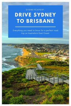 Let SydneyExpert help you plan the perfect Sydney to Brisbane road trip. Explore the towns along the Pacific Coast Drive north and work out the best places to stop things to see and places to stay along the way. Visit Australia, Sydney Australia, Australia Travel, Western Australia, Australia Holidays, Tasmania, Cairns, Pacific Coast, North Coast