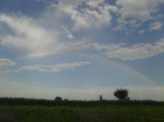 See That Rainbow! by HaleyGottardo