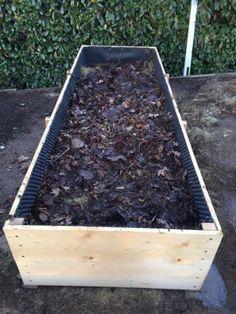 Vyvýšené záhony - foto návod – Z mojí kuchyně Plants, Gardens, Veg Garden, Garden, Organic Gardening, Plant, Garden Types, Planting, Yards
