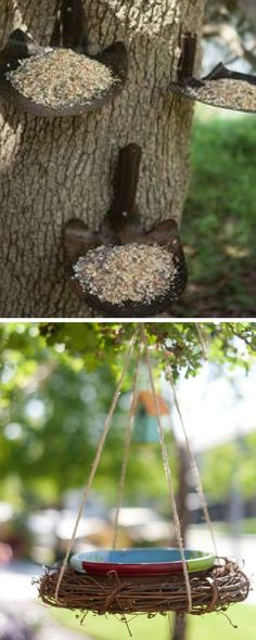 70+ awesome DIY birdfeeder ideas - The Architects Diary
