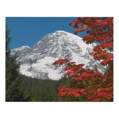 Mount Rainier and Autumn Leaves Photo Panel Wall Art - photography gifts diy custom unique special
