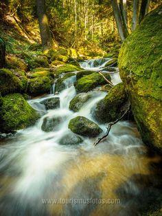 Die Ysperklamm im Waldviertel in Niederösterreich gehört zu den schönsten Plätzen Österreichs. Hotels, Waterfall, Outdoor, Doctor Office, Nice Asses, Outdoors, Waterfalls, Outdoor Games, Outdoor Living