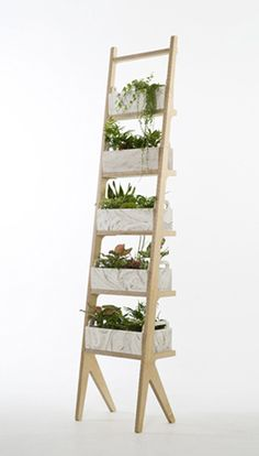 Use ladder to hold indoor herb garden