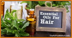 I love using essential oils on my hair. They smell great, are nourishing, strengthening, can balance hormones, prevent hair loss, and get rid of dandruff.
