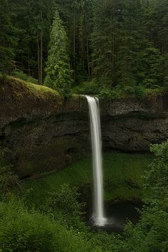 You don't have to leave the United States to see breathtaking sights - this beautiful waterfall is located in Silverfalls State Park, Oregon.