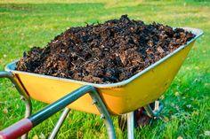 Bokashi, Garden Tools, Garden Ideas, Farmer, Outdoor, Gardening, Tips, Flowers, Plants
