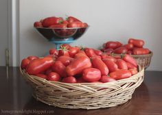21 pounds of organic San Marzano tomatoes from my little garden. I've been busy canning tomato sauce! - Homegrown Delight