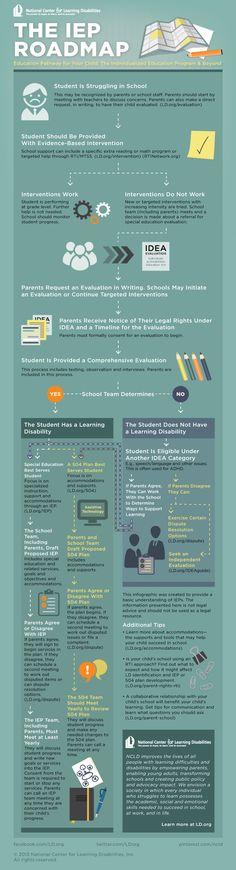 IEP roadmap infographic