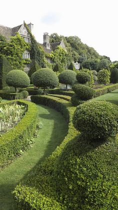 Topiary Abbey House Gardens ~ 1300 years of history, Open daily through October located in Malmesbury, England by Nigel Musgrove - Formal Gardens, Outdoor Gardens, Amazing Gardens, Beautiful Gardens, Landscape Architecture, Landscape Design, Garden Cottage, Home And Garden, The Secret Garden