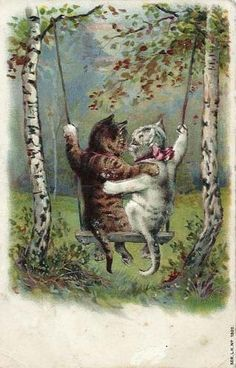 Cat sweethearts. Postcard. 1904.
