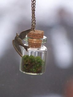 ON SALE NOW Moss Terrarium Necklace on Chain with by chickpeaa