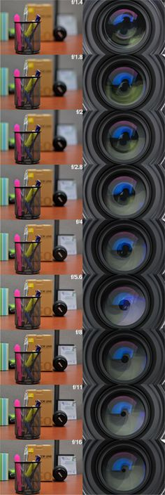 Cameta In Focus | Cameta 101: Understanding Depth of Field