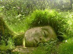 Sleeping Moss Giant - Lost Gardens of Heligan kristy_cokayne