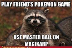 best of week,evil plotting racoon,magikarp,master ball,meme,Memes,shiny,useless