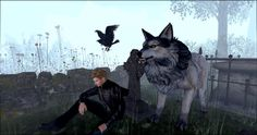 My new pets @Netherwood  My crow and grey wolf.
