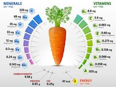 Carrot- Vitamins & Benifits Carrot are good source of Vitamin A,C,K and pantothenic acid… by maujmasti Carrots Nutrition, Health Benefits Of Carrots, Carrot Benefits, Nutrition Chart, Nutrition Tips, Health And Nutrition, Human Nutrition, Nutrition Education, Survival Skills