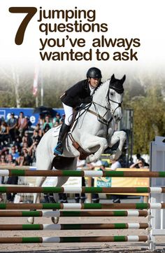 There are some jumping questions that just seem too obvious to ask your trainer — so we've asked them for you... http://www.horseandhound.co.uk/features/jumping-queries-474444#RgwHXz9jE2Fv6kEC.99
