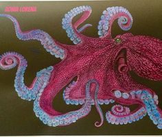 Octopus 2 By Zonia Lorena R Coloring BooksColouringColored
