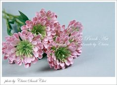Dahlias http://clairespapercraft.blogspot.ca/search/label/punch%20projects
