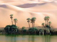 【蜃気楼】広大な砂漠の小さなオアシス画像集【恵みの泉】 | 忘郷クオリア